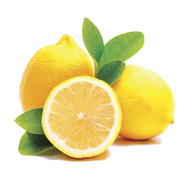 Eureka Lemons Cartons 668 (Min. Order)