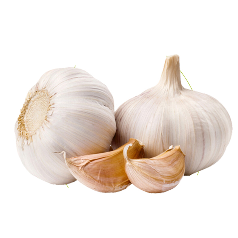 White Garlic Box 10kg/carton. /Bag / Ton (Min. Order)