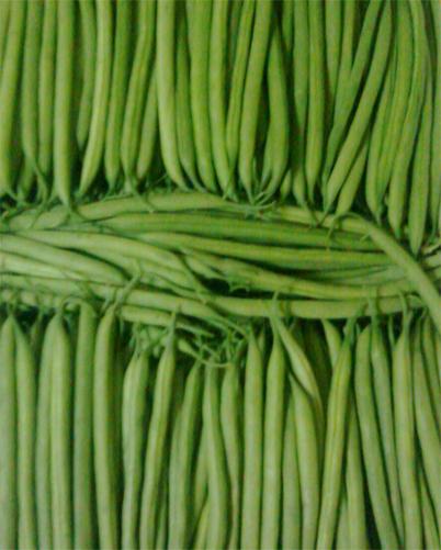 Fine Grean Beans